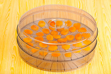 Food dryer with Dried Apricots on a kitchen table