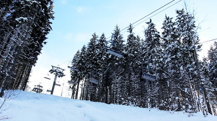ski lifts moving through snow-covered winter forest, bottom view