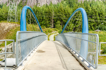 Pedestrian Bridge along a Path