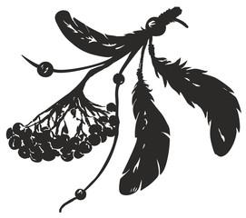 Rowan and black feathers