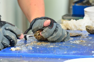 Preparing Oysters with sharp knife