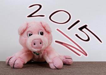 Silvester Schwein 2015