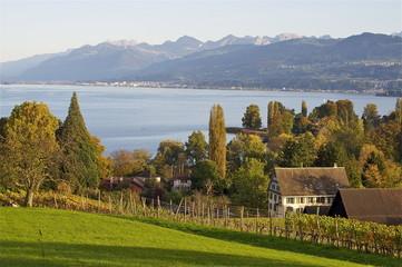 Halbinsel Au mit Blick über Zürichsee