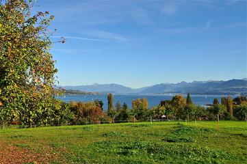 Halbinsel Au darunter Zürichsee