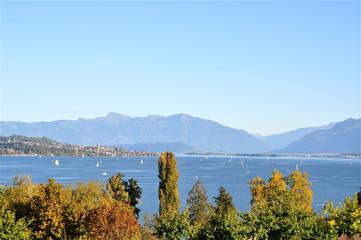 Blick über Zürichsee von Halbinsel Au