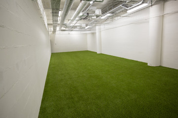 Football lawn in the training room