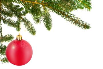 Christmas Ball With Fir Branch