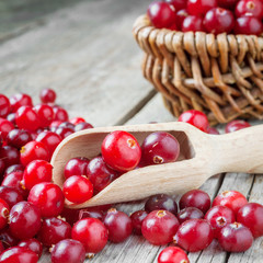 Fresh red cranberries in wooden scoop on old table