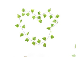 green leave heart isolated