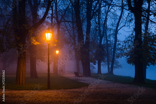 Vintage lamp in the city park during dawn - 72335662