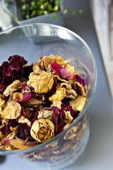 Dried roses in a glass jar
