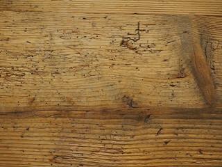 Wood worm holes