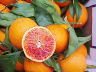 blood orange leaf