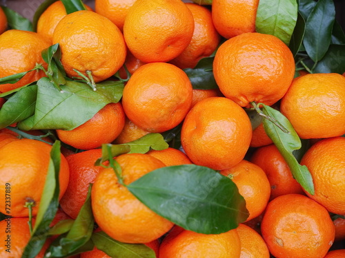 canvas print picture organic oranges with leaves