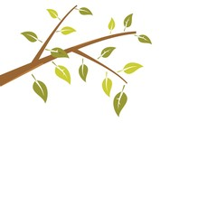 Abstract branch tree is isolated on white background