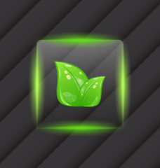 Transparent frame with eco green leaves