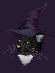 Kitty Witchy