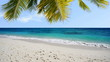 Tropical beach stock footage