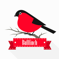 Bullfinch on a branch with a ribbon. Vector illustration.