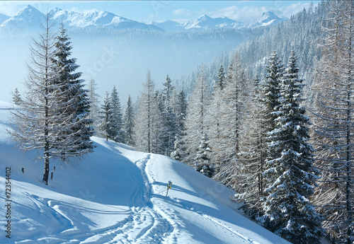 canvas print picture Morning winter misty mountain landscape