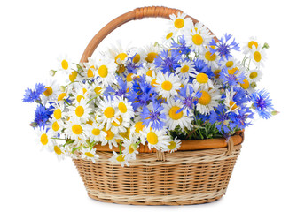 Wicker basket Flowers