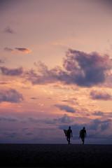 silhouettes de surfeurs