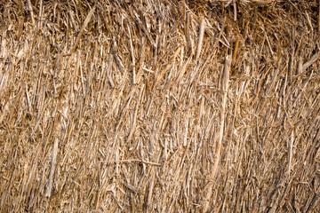 Golden hay background, bale, straw, haystack