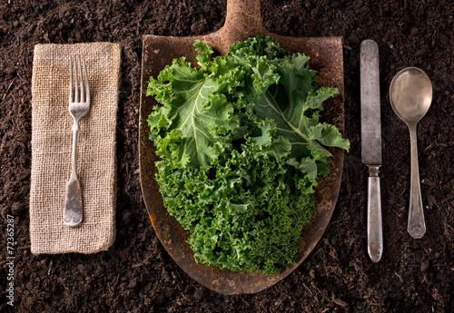 Fotobehang Kruidenierswinkel Kale
