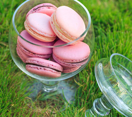 Macarons glass bowl on green grass background