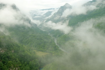 Tara River Canyon In The Clouds And Morning Mist, Serbia
