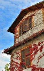 Casa con edera rossa rampicante