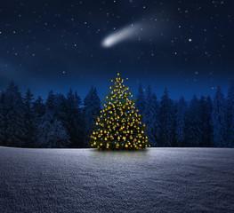 Weihnachtbaum im Winterwald
