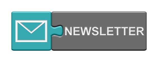 Puzzle Button grau hellblau: Newsletter