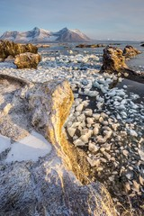 Arctic fjord vertical landscape