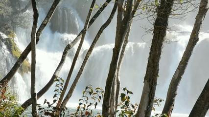 Schäumender Wasserfall hinter den Bäumen