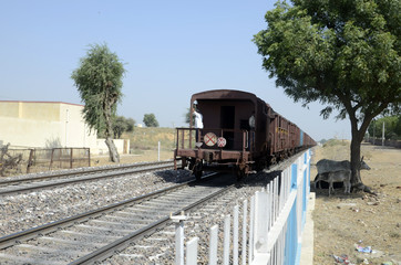 Train rajasthani