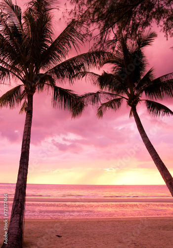 Fotobehang Candy roze Burning Skies Evening Scene