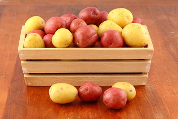 Red and yellow new potatoes