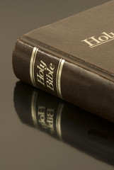 Holy Bible on reflective Surface (Vertical)