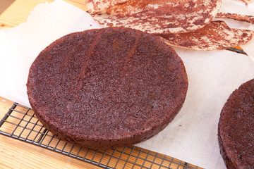 two chocolate sponges