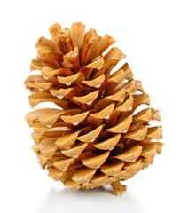 Cone isolated on white