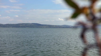 Lake view with foreground blurred plant element