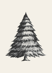 Sketch illustration of Christmas tree