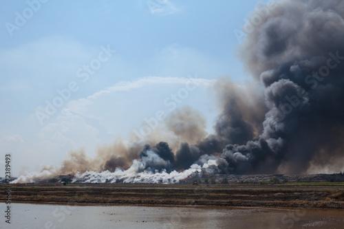 Burning garbage heap of smoke - 72389493