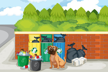 Garbage and dog