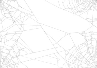 spider web isolated on four white corners