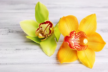 Yellow tropical orchid flowers on color wooden background