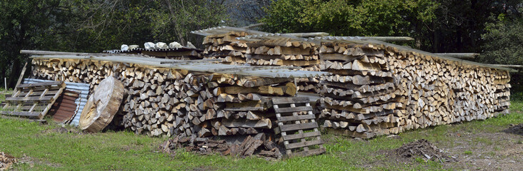 firewood for heating stacked in piles