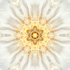 White Mandala Flower Center. Concentric Kaleidoscope Design