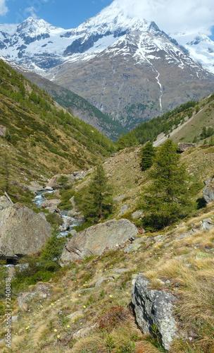 Fototapeta Summer Alps mountain